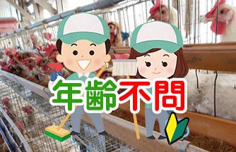 求人情報|【関市神野】週払い可能 動物好き歓迎 鶏の飼育作業|ドゥパワーコーポレーション